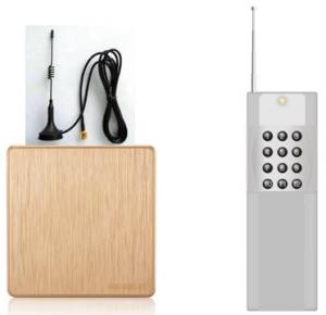 网络IP广播遥控器BVS-9613